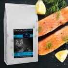 Alimentation de qualité pour Chats - Alimentation saine et gourmande !